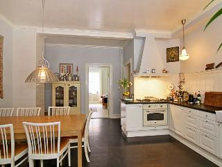 Large Copenhagen apartment with courtyard, Copenhague