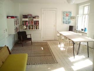 Large & charming Copenhagen apartment in city centre