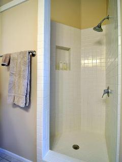 Second Bathroom Shower