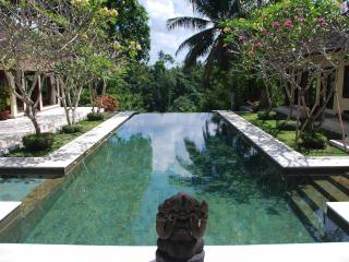Luxury cliff-top villa: river view + tennis court, Canggu