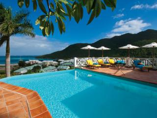 CASA BRANCA... a gorgeous tropical hideaway! Very private and quiet with lush gardens, Anse Marcel