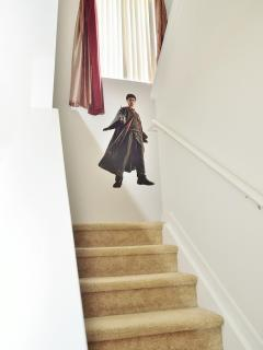 Harry waiting to guide you on the Stairs