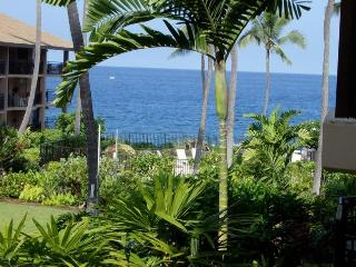 Ocean Front Kona Makai Perfect Sunset Views Furnished 1 bedroom Condo, Kailua-Kona