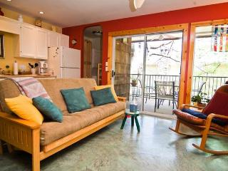Beautiful Zilker Park Condo-Walk to Zilker Park-