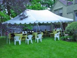 Side yard, great for family reunions