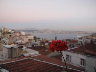Istanbul Taksim Center 3 or 2 Bedroom Flats in Cihangir with Sea View