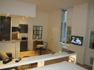 Very nice apartment in front of Grand Theatre, Burdeos