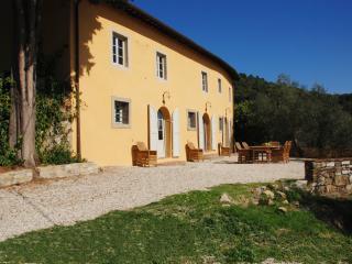 Farmhouse for Rent Close To Lucca - Casa Arsina