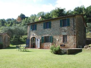 Farmhouse near Village on Wine Estate - Casa Gennaro, San Gennaro Collodi