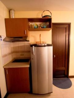 Induction cook top and fridge