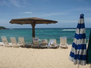 Dorado Beach 3 BR Beach Villa near Ritz Reserve