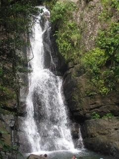 Rain Forest and other adventures are great day trips to take- we can help with activity planning!