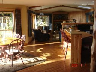 Main living area with wood floors, skylights, cedar beams