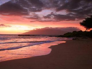 Spectacular Ocean View Beach 1/2 mi, Wailea/SKihei