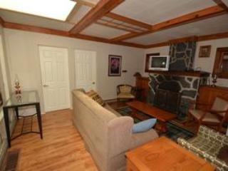 Livingroom featuring fireplace