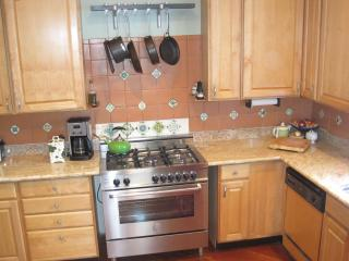 Granite countertops, quality gas stove
