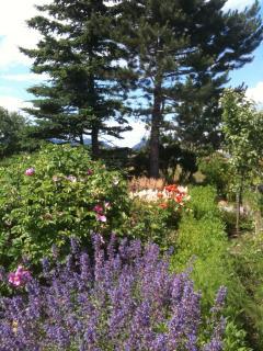 Garden near parking area