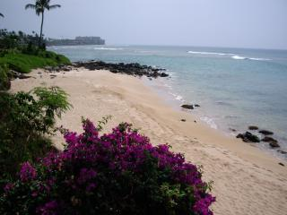BEST KEPT SECRET ON MAUI.  OCEANFRONT 2B, 2B LUXURY CONDO AT AFFORDABLE PRICE