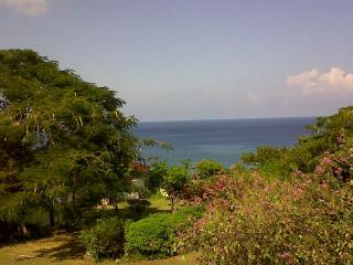 Montego Bay Studio, beautiful ocean views, near Doctors Cave Beach and Hip Strip