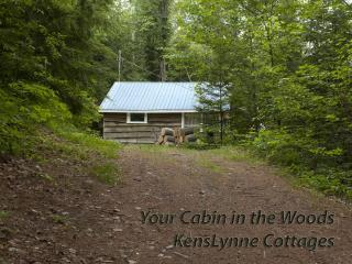Hideaway- 2 Bedroom Lake front Cottage!