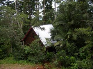 Romantic Rainforest Cottage 40 min from city