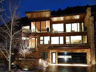 Stunning Contemporary Home with Aspens best view