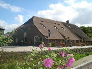 Gouda, middle of Holland  farmhouse till 15 pers.