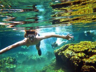 Underwater in the Lagoon
