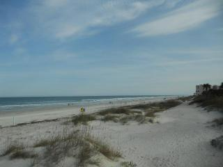Steps to Ocean Hot Tub Firepit Fence Pet Friendly, New Smyrna Beach