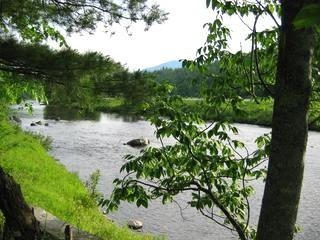 Ausable River by cottage