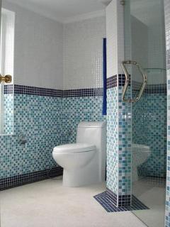Bathroom - toilet, shower area with glass door