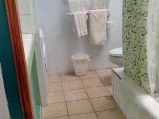Master bagno, ha una lavatrice, bagno con doccia, lavandino singolo, wc.