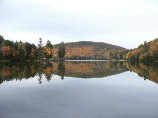 View of Lake, from Our Lake Frontage