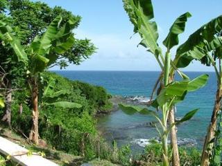 Looking south towards Trinidad
