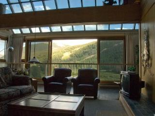 Keystone Village Penthouse