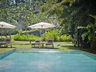 The Petals - tranquil gardens overlooking paddy, Galle