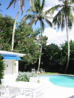 Backyard - private and lush garden with swimming pool. We have plenty pool toys for your kids!
