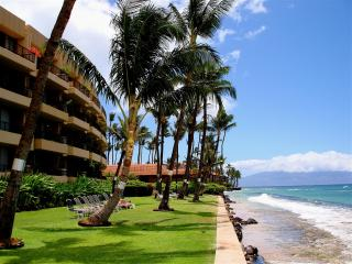 COMFORTABLE & COZY 1 BEDROOM IN OCEANFRONT RESORT