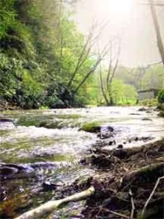 Beautiful Big Creek
