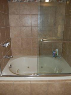 Jaccuzi tub/shower in hall bathroom.