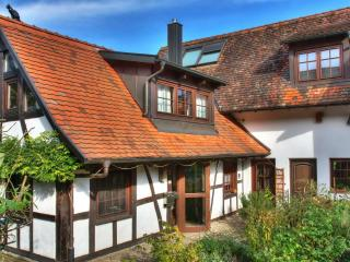 Exclusiv Black Forest Holiday Home near Strasbourg