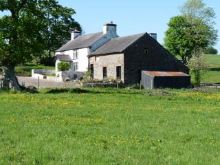 The Farmhouse from the meadow