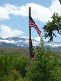 We have a patriotic little town!