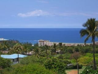 $205 Nov./Dec.'16 SALE-Ocean Views-Ekolu #1108, Wailea