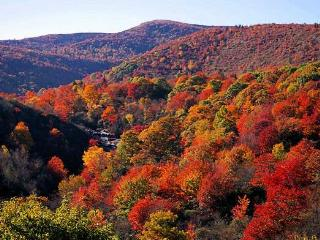 Fall Colors Special! Only $899/Weekend $1899/Week, Cashiers