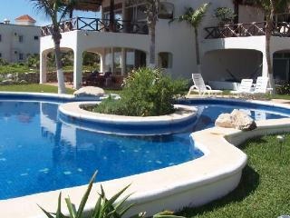 The view of the pool