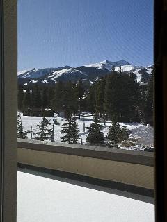Ski Views