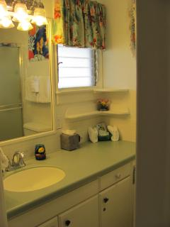 Your New Corian Counter top/sink and all Tile Shower