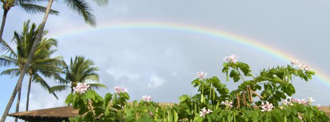 Rainbows in your Garden