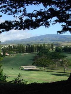 Golf at the PGA Kapalua